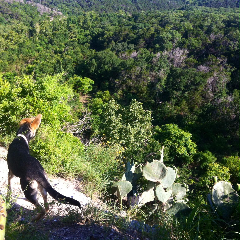 Greenbelt Hike