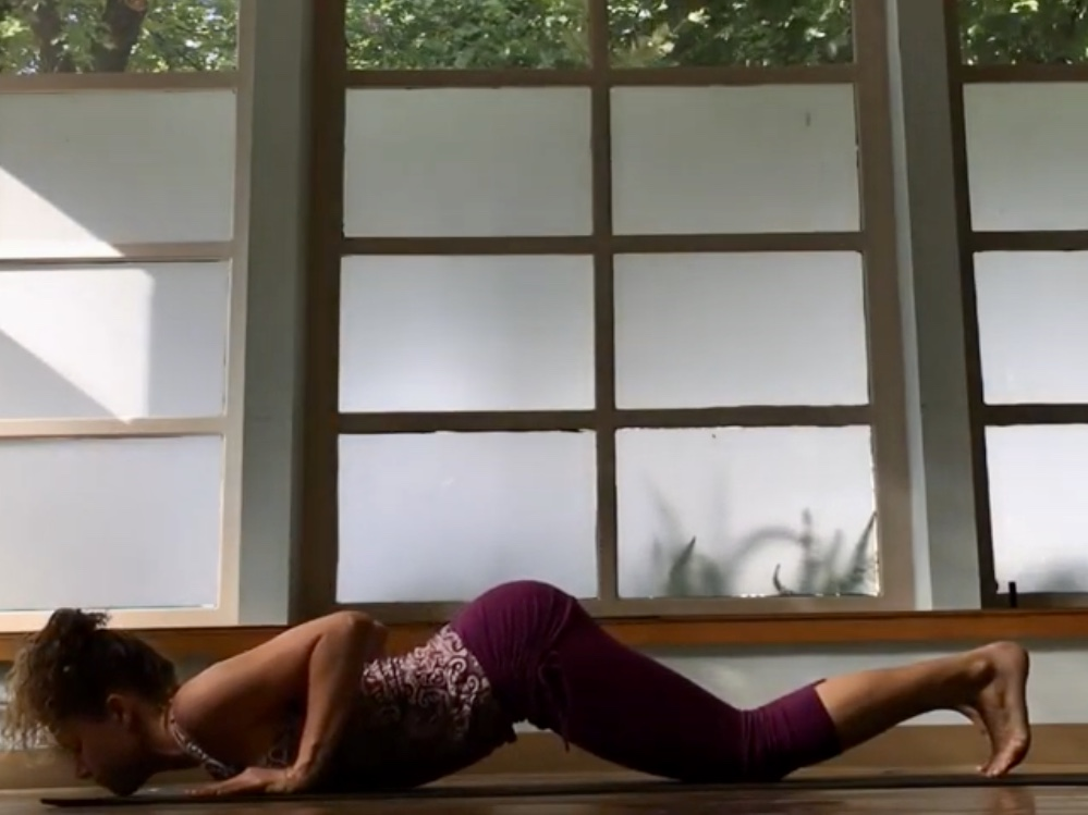 Vinyasa Basics Knees Chest Chin
