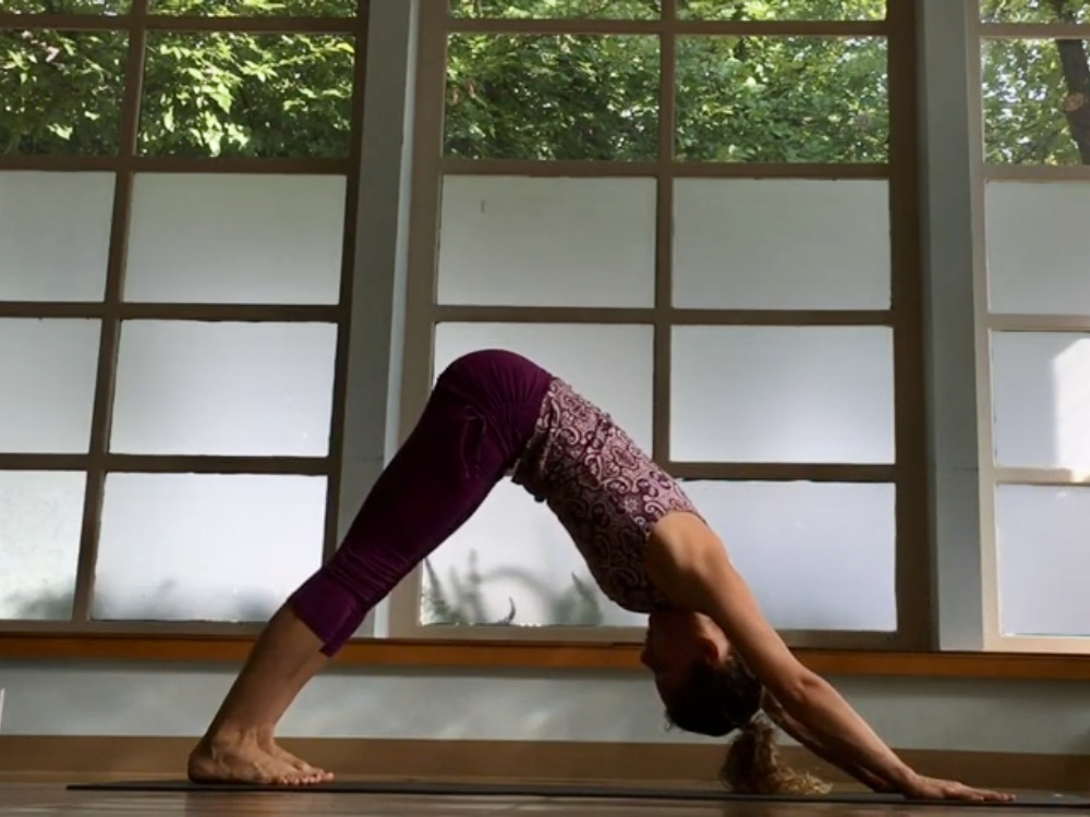 Vinyasa Basics Downward Dog