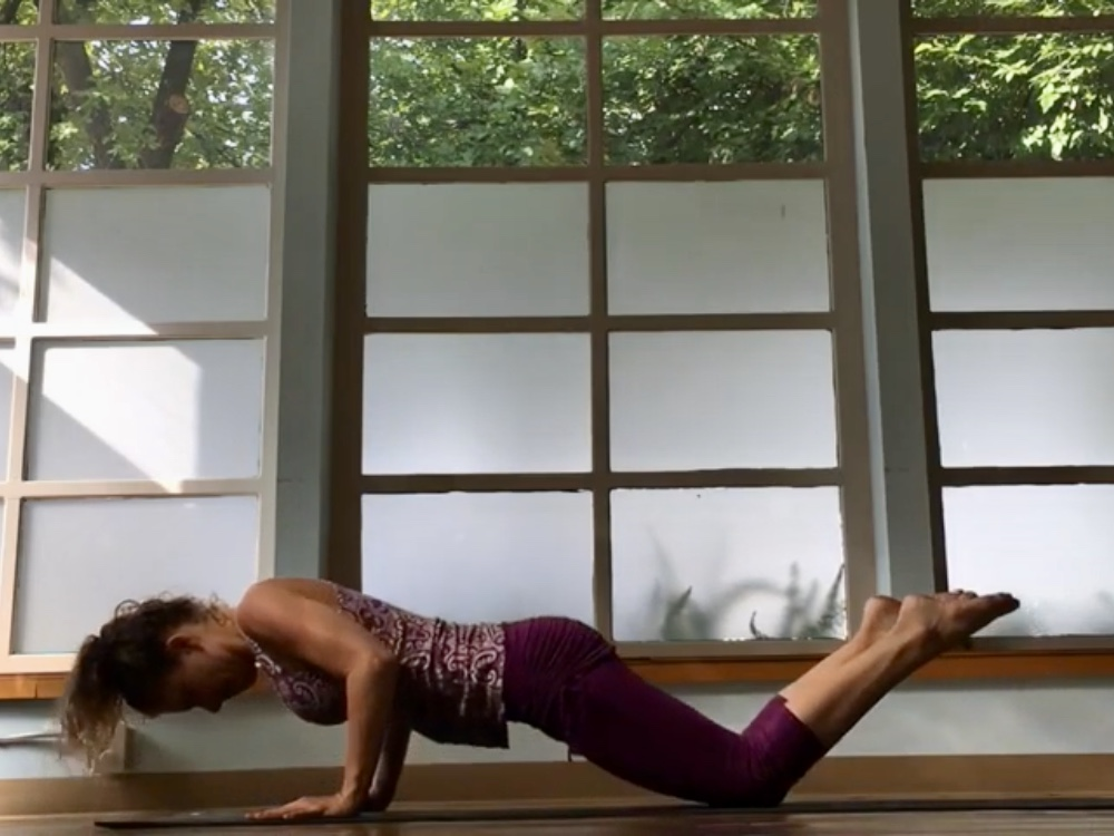 Vinyasa Basics Press Up