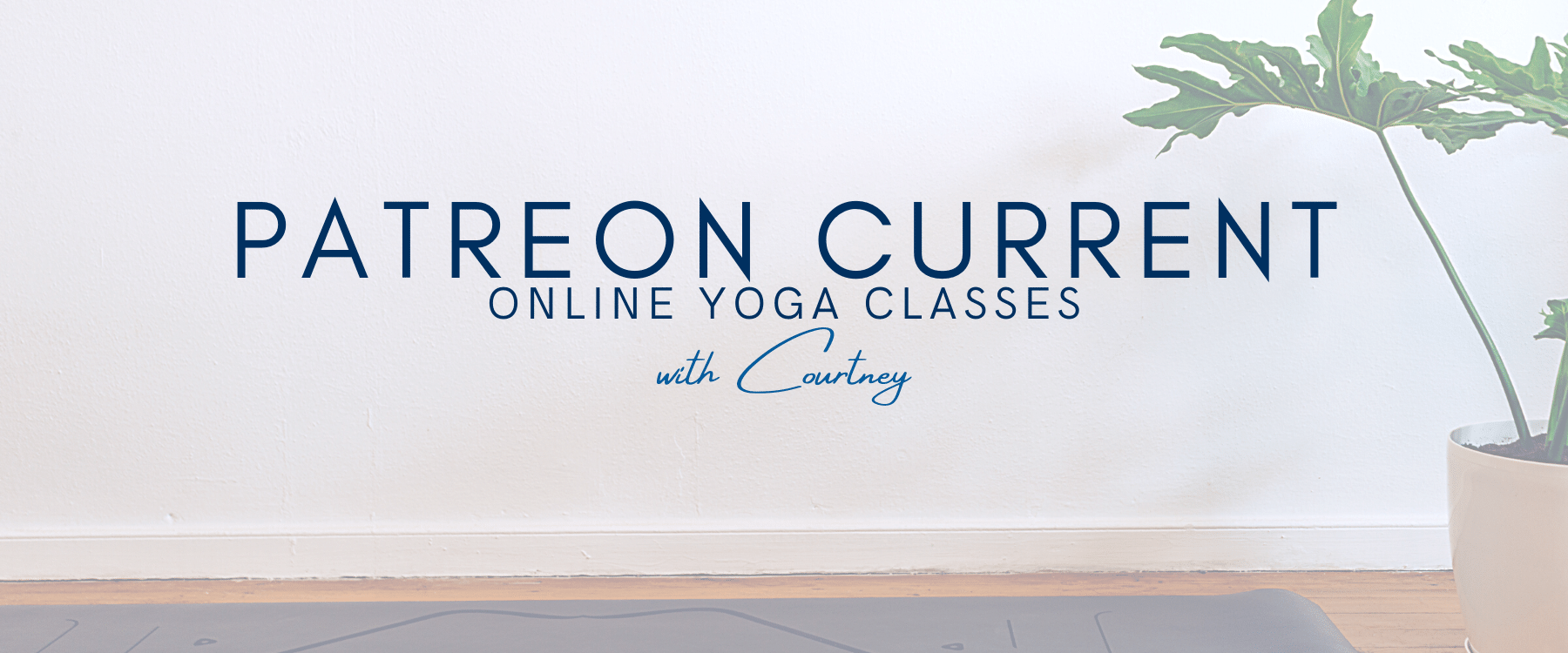 Patreon Yoga Current Yoga Videos Online with Courtney
